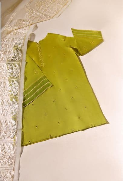 FORMALS - Green - Agha Noor Outfit - 2 Piece