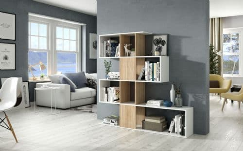 Shelving and Bookcase