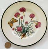 "Prinknash Pottery tea plate Florabunda 6"" Armeria Maritima sea thrift butterfly"