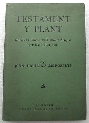 TESTAMENT Y PLANT vintage 1940s Welsh childrens Bible wartime WW2 Hughes Roberts