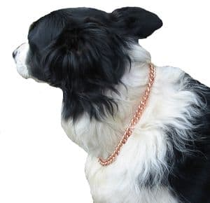 COPPER MAGNETIC THERAPY DOG CHAIN COLLAR 12