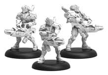 Paladin Annihilators  Warcaster Iron Star Alliance Squad (metal)