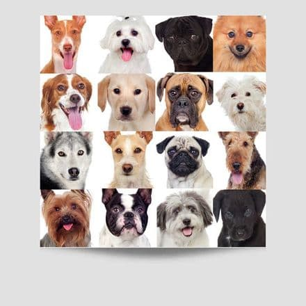 16 Dogs Poster
