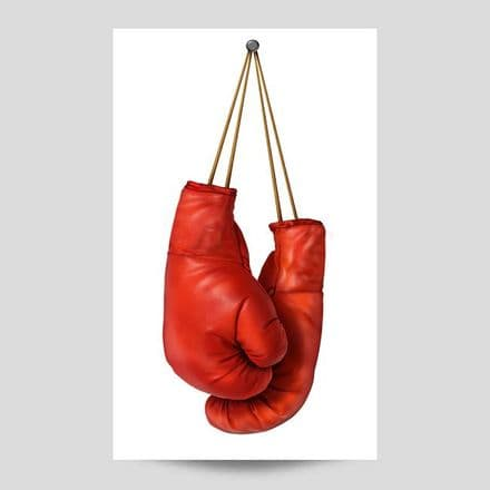 Boxing Gloves Sports Poster