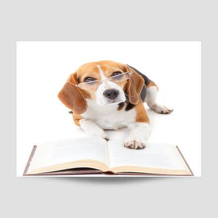 Dog Reading A Book Poster