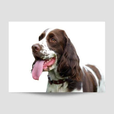 Dog With Long Tongue Poster