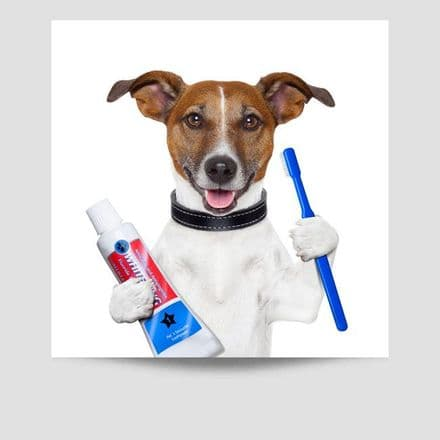 Dog With Toothbrush Poster