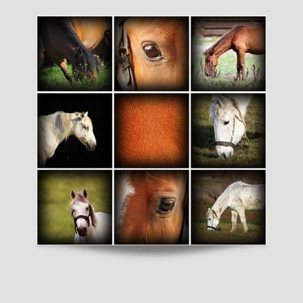 Horse Collage Poster
