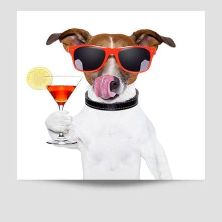 Jack Russell Sunglasses Poster