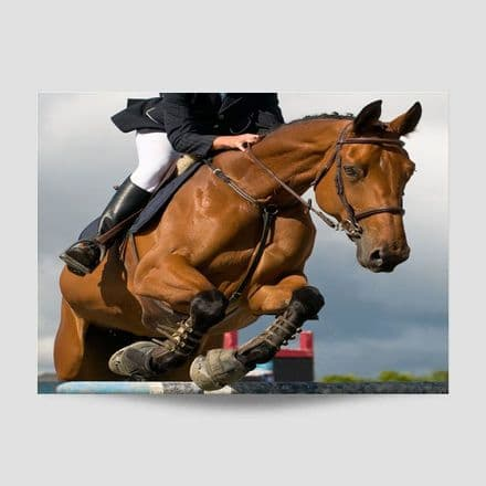 Jumping Horse Poster