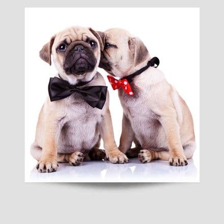 Puppies In Bow Ties Poster