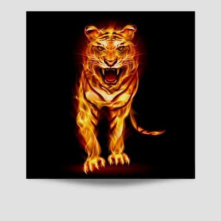 Tiger On Fire Poster