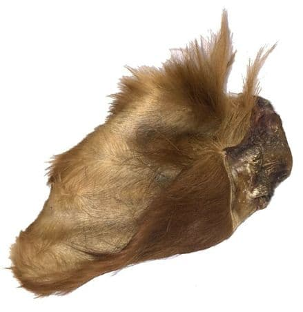 HAIRY  COW EARS  pack of  10