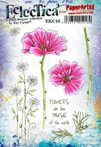 PaperArtsy Eclectica E³ Mounted Rubber Stamp Set - Kay Carley 48 - EKC48