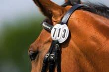 COMPETITION DRESSAGE HORSE  BRIDLE NUMBER DISC - GREAT VALUE
