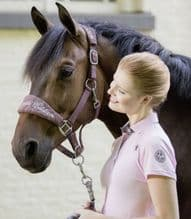 DIAMONDS FLEECE HEAD COLLAR - NAVY MOCHA RRP £15.95