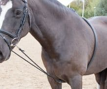 SHIRES SOFT LUNGE SYSTEM - RRP £24.99